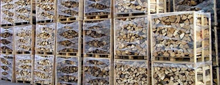 Energie renouvelable et biomasse, ce qu'il faut savoir