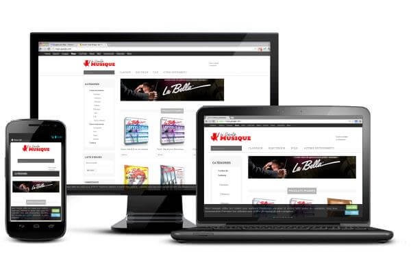 Achetez vos cordes d'instrument sur une boutique en ligne…